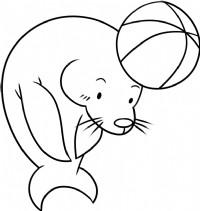 海狮简笔画图片教程(三)