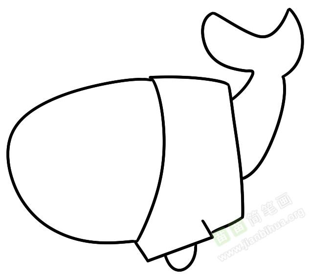 鲸鱼简笔画图片教程 二