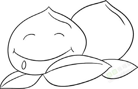 桃子简笔画图片教程