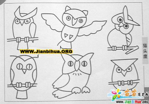 猫头鹰简笔画3张 第2张 高清图片