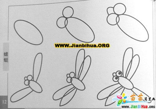 蜻蜓简笔画的画法2张
