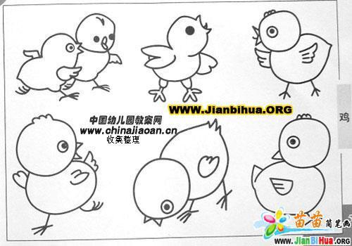 小鸡简笔画图片2张
