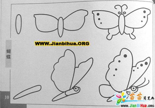 蝴蝶简笔画图片4张