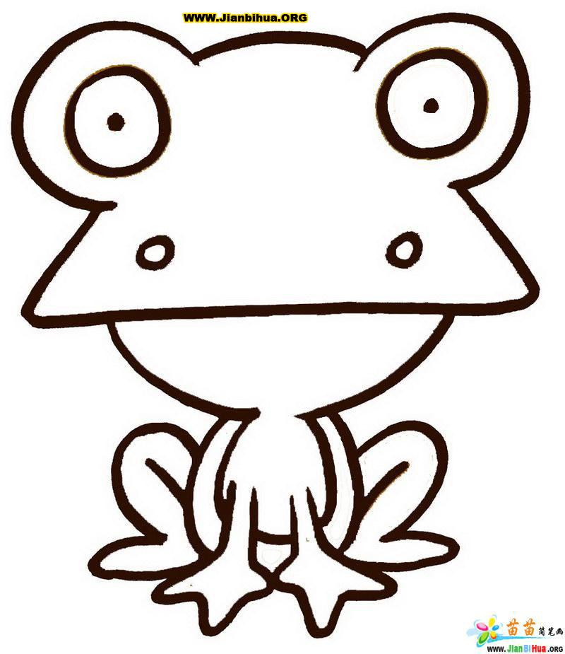 画)可爱海豹关于动物的动物8-小(简笔画)卡通动物的