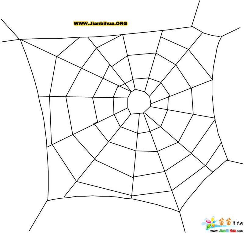 蜘蛛网简笔画的画法