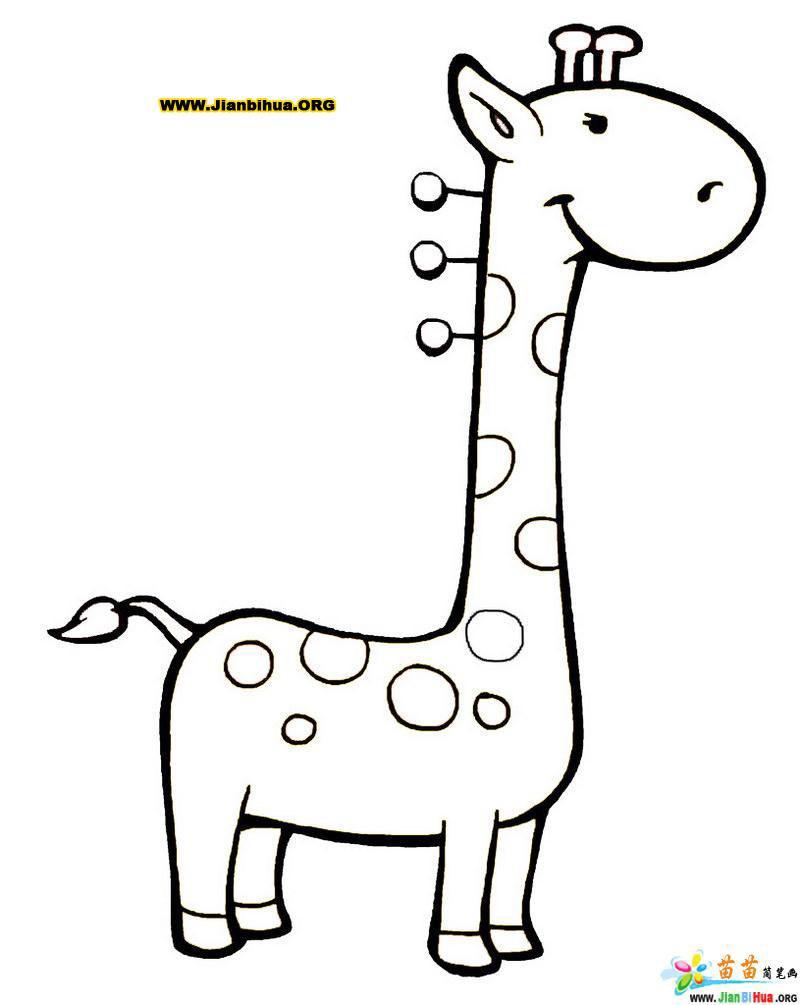 卡通 谭志东/类别:野生动物简笔画图片张数:10张上传者:谭志东尺寸:...