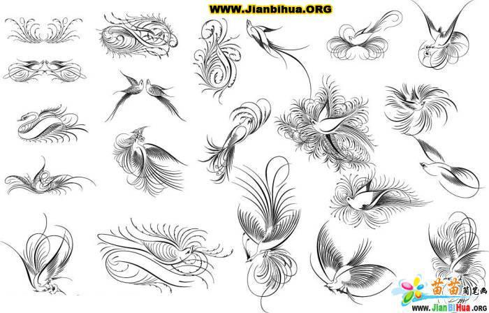 线条花鸟简笔画图片12张