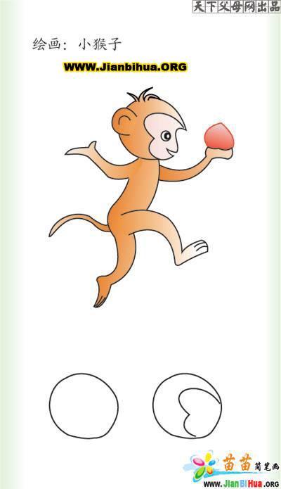 小猴子的简笔画图片5张(第5张)