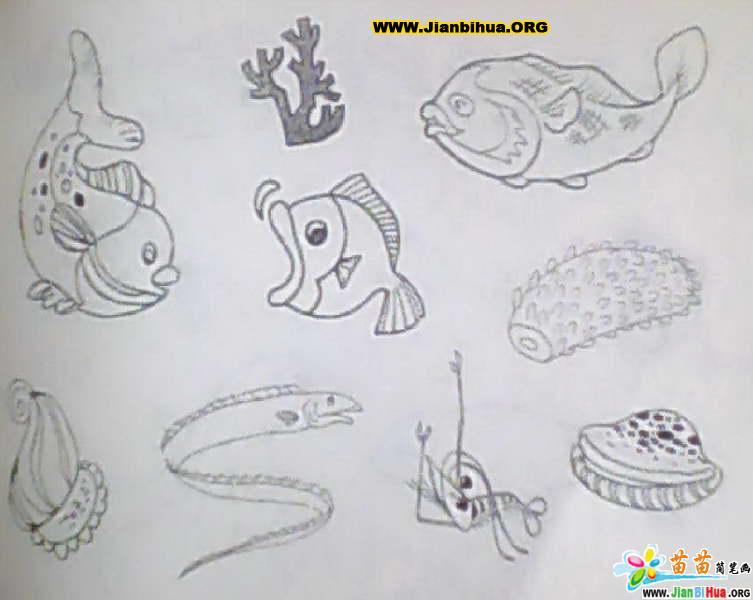 图片 简笔画,海洋世界简笔画图片,海洋简笔画图片 .