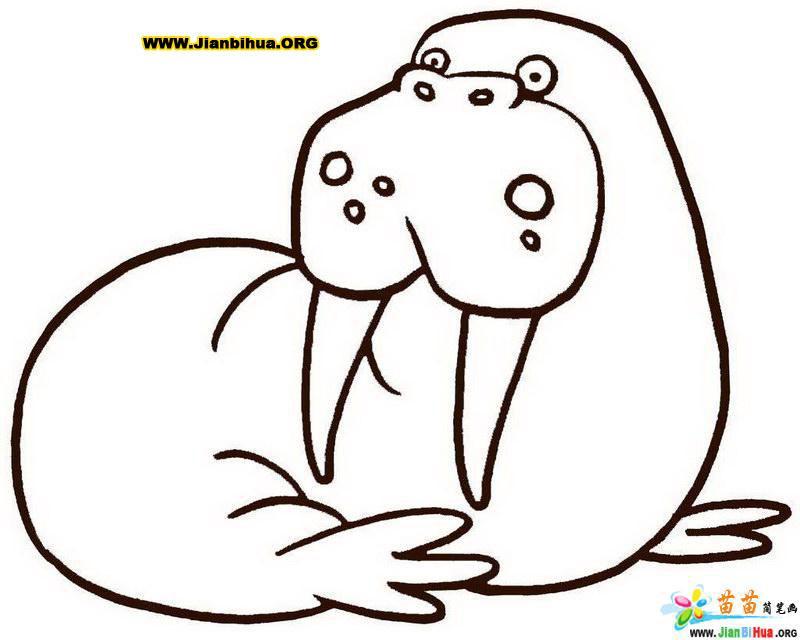 动物简笔画图片 可爱 可爱动物简笔画大全