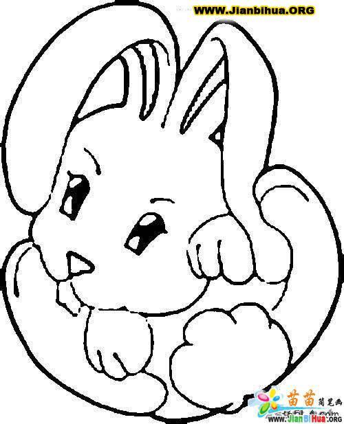 兔的简笔画图片大全5张 第5张