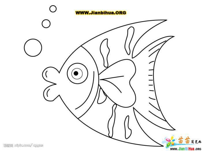 小鱼的线稿图5张