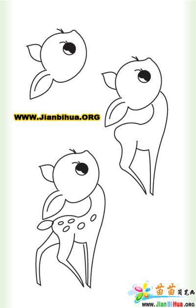 小鹿的简笔画图片4张