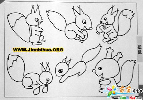 鸽子简笔画_小松鼠简笔画_白鹤简笔画4张(第2张)