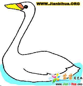 关于小鸟的简笔画怎么画