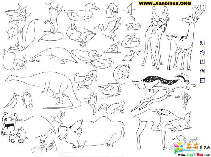 几十种动物的简笔画图片6张