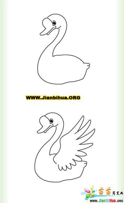 大白鹅的简笔画图片4张