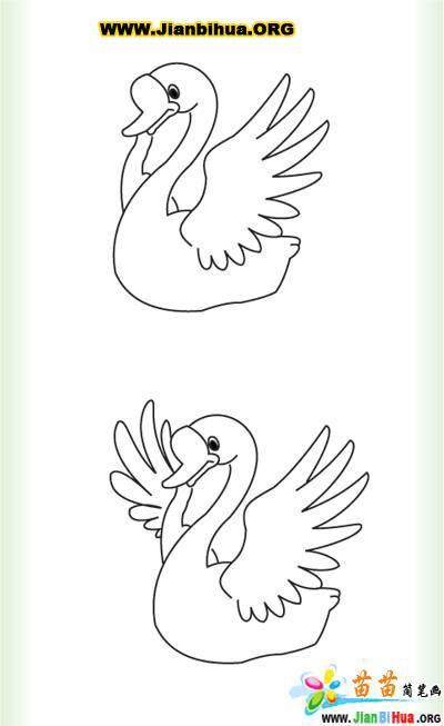 大白鹅的简笔画图片4张 第2张