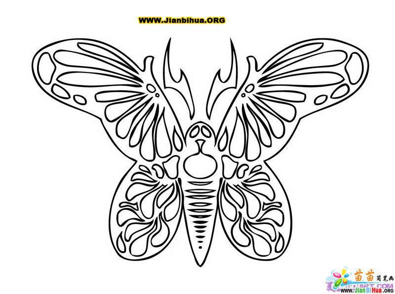 蝴蝶简笔画图片作品(10张)