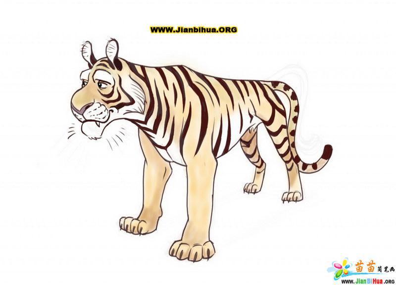 老虎简笔画的画法图片(第16张)