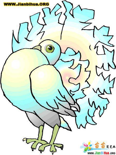幼儿园简笔画素材图片――鸽子