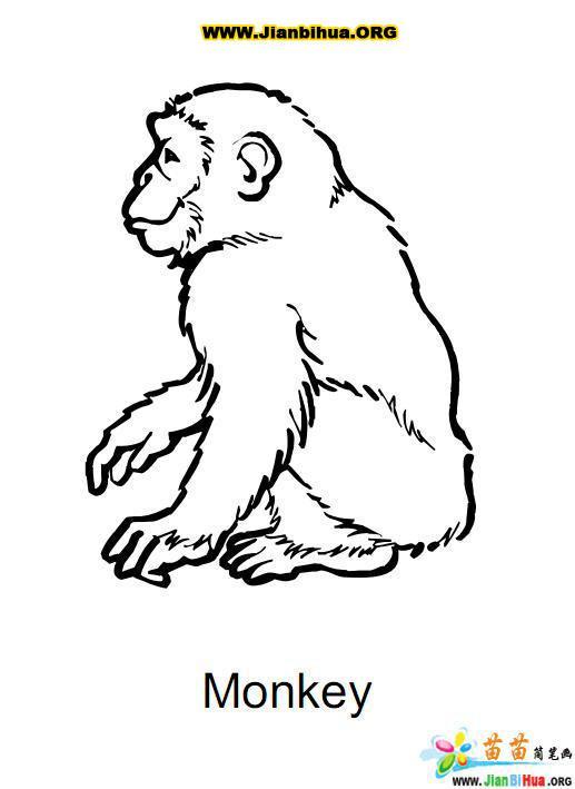 中国 简笔画/类别:想象动物简笔画图片张数:12张上传者:陈小雅尺寸:...