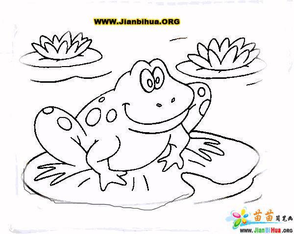青蛙与荷叶图片简笔画  可爱 的小动物青蛙 简笔画 图片素材,非常活泼