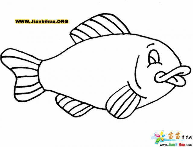 鱼涂色卡图片31张 第20张