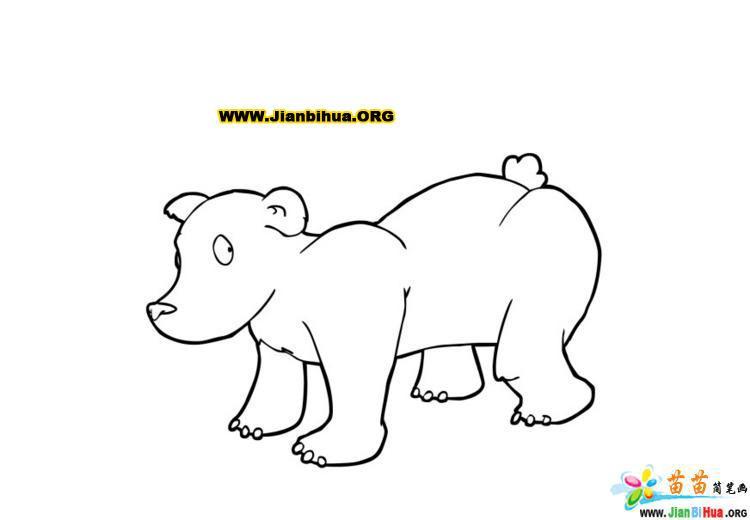 常见动物简笔画彩色版36张