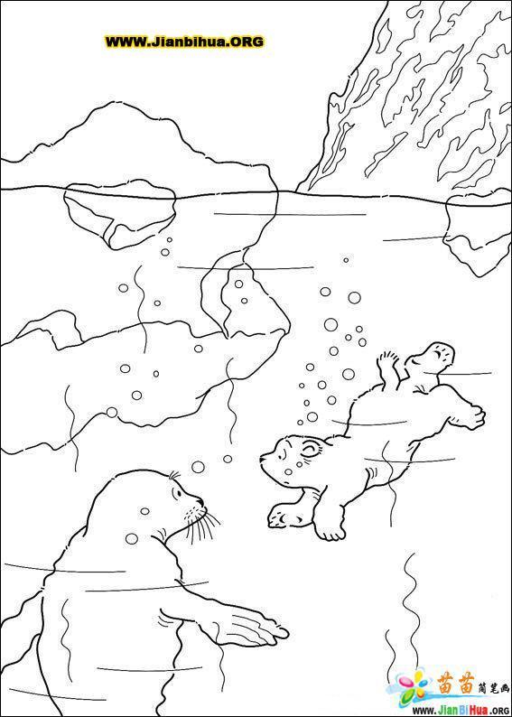 森林动物乐园简笔画内容图片展示_森林动物乐园简笔画图片下载
