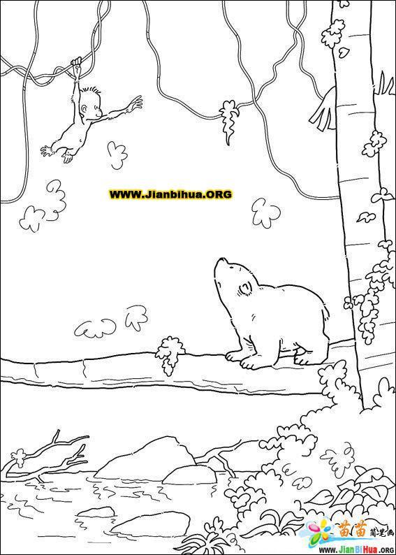 可爱北极熊简笔画图片38张(第27张)