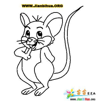 老鼠简笔画图片8张