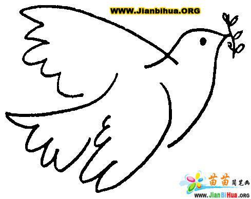 漂亮的和平鸽简笔画图片 鸽子简笔画 简笔画大全