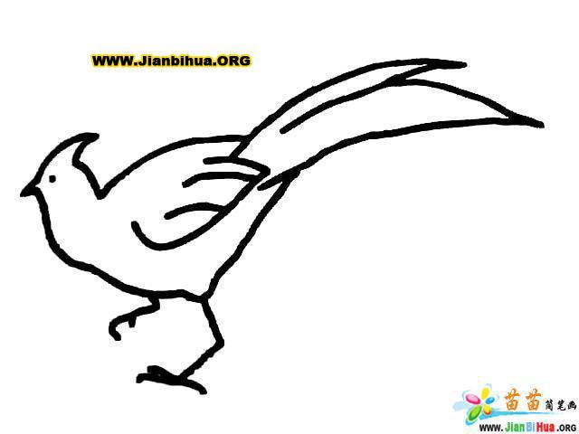 鸟简笔画 关于鸟的简笔画12张