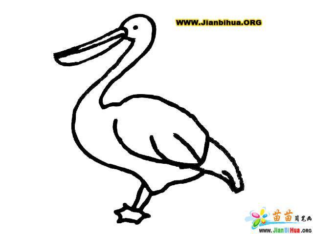 鸟简笔画 关于鸟的简笔画12张 第6张