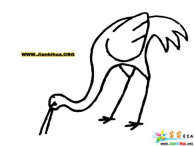 鸟简笔画——关于鸟的简笔画12图片