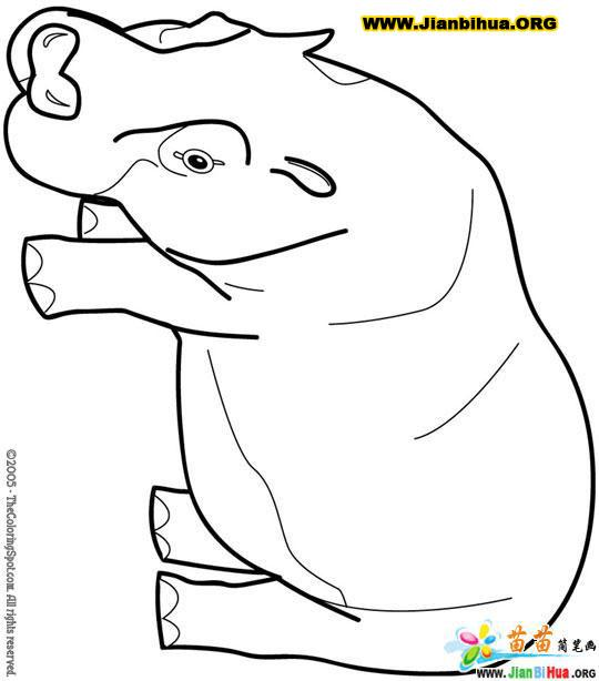 河马简笔画图片(4张)(第4张)