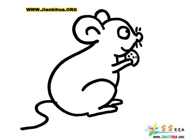 小老鼠动物简笔画3张
