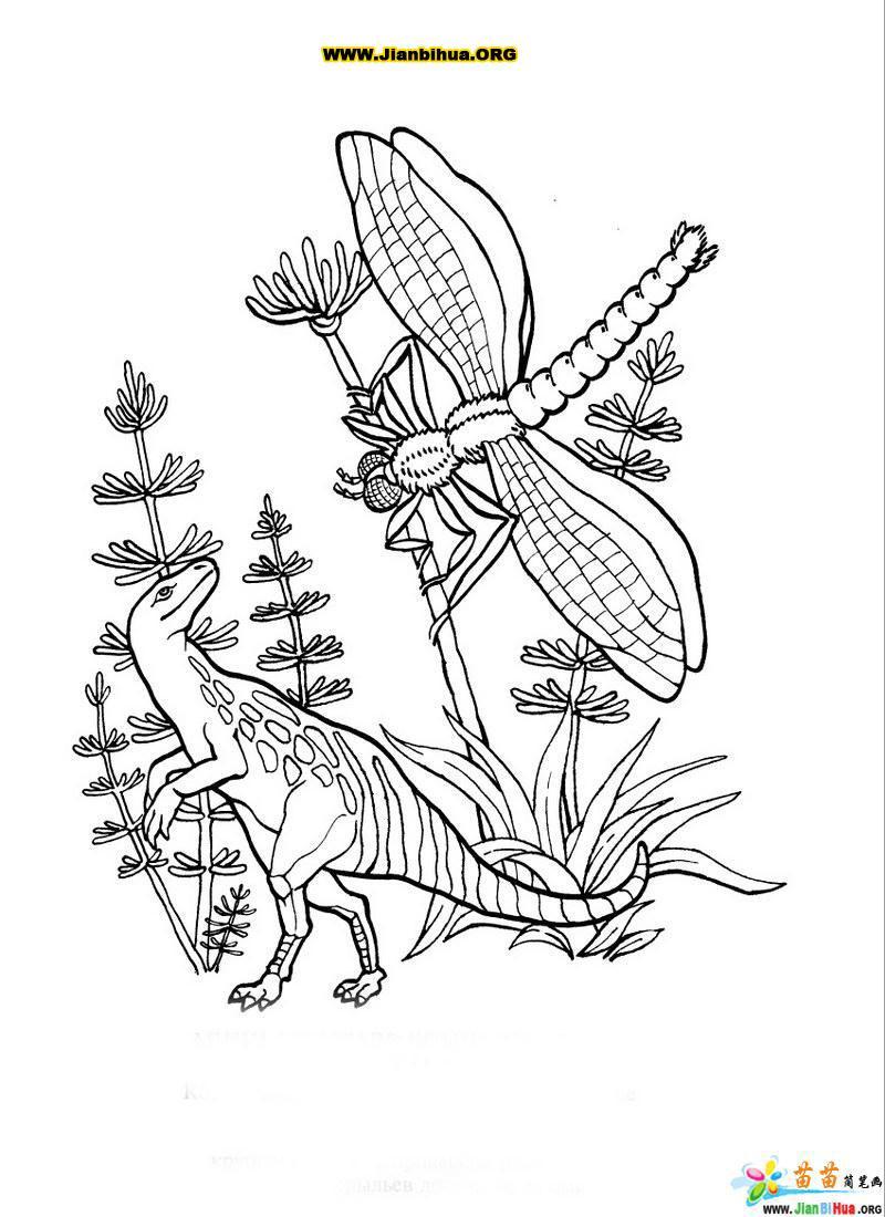 恐龙古生物简笔画 生物篇 第10张