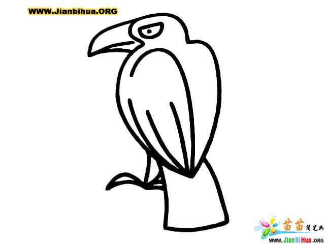 企鹅简笔画_山羊简笔画