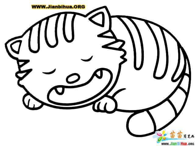 画小猫的简笔画图片图片 小猫简笔画图片大全,小猫图片简笔