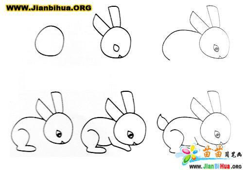 常见动物简笔画大全12张(第11张)