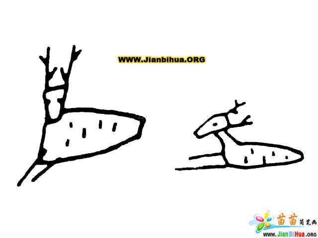 兔子简笔画_鹿简笔画_马简笔画_袋鼠简笔画11张