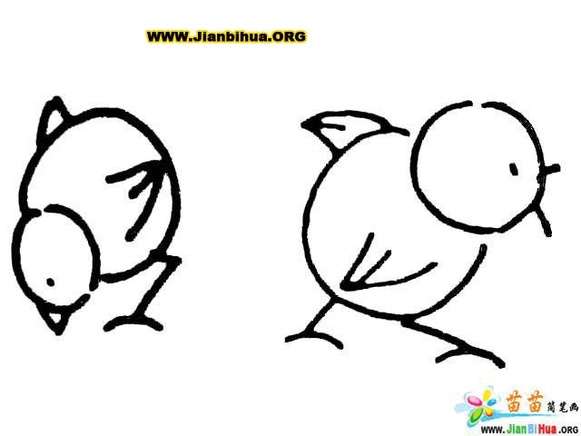 鸡鸭鹅简笔画图片 10张画技法大全 第8张
