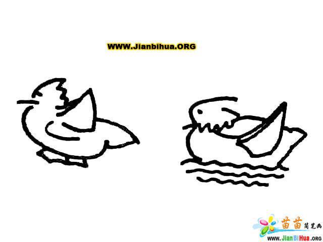 简笔画技法大全 鸟儿类的画法8张 第9张