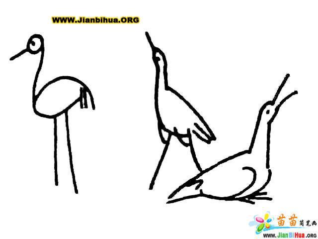 简笔画小鸟画法步骤图内容图片展示_简笔画小鸟画