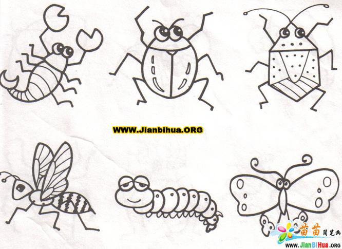 昆虫生物简笔画共5张-卡通动物-美歪网www.meiwai