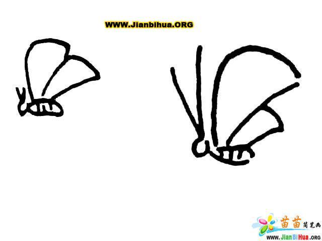 蝴蝶简笔画图片大全(10张)
