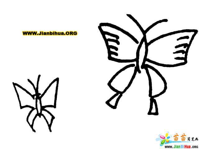 蝴蝶简笔画图片大全 10张 第7张
