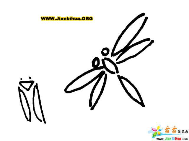 红蜻蜓皮鞋logo
